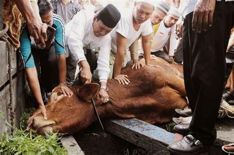 Syahadatain Syarat Utama Tegaknya Syariat Islam tata cara menyembelih hewan qurban sesuai syariat islam