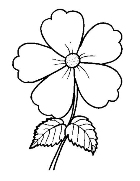gambar bunga sakura hitam putih koleksi gambar bunga