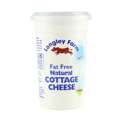 free cottage cheese cottage cheese free tubezzz photos