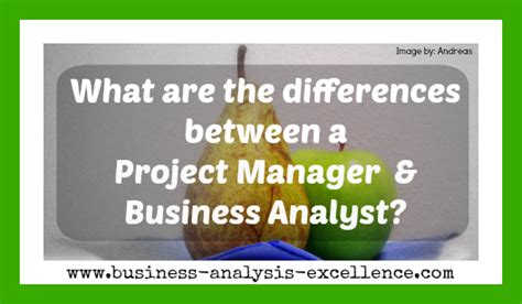 Difference Between Mba And Business Management by Differences Between A Project Manager And A Business Analyst