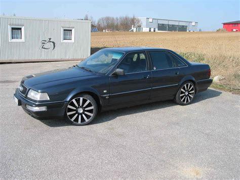 1991 Audi V8 by 1991 Audi V8 D11 Pictures Information And Specs