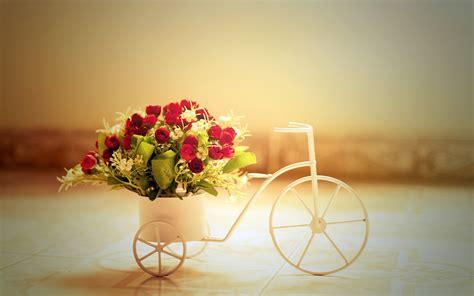 wallpaper flower romantic red roses creative hd desktop wallpapers 4k hd