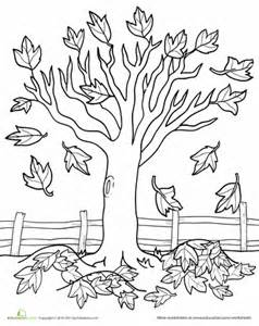 Maple Tree Coloring Page Fall Tree Coloring Page