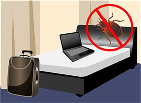 how to avoid bed bug bites bed bugs scourging westchester library discover the best bed bug treatment help