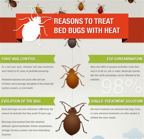 bed bugs heat treatment  calgary  kill bed bugs