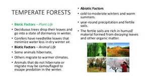 Tropical Desert Plant Adaptations - biomes abiotic and biotic parts