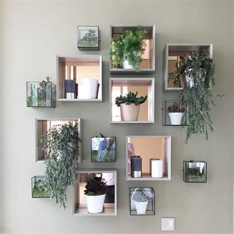 interior plant wall 25 best ideas about plant wall on wall