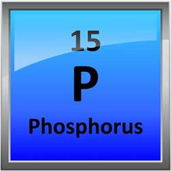 015 phosphorus science notes and projects