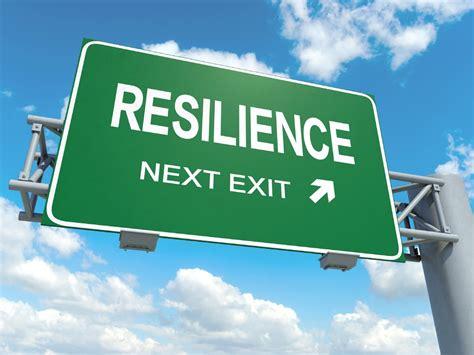 type r transformative resilience for thriving in a turbulent world books is resilience the new sustainababble resilience