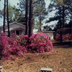 polk obituary beaufort south carolina dillard