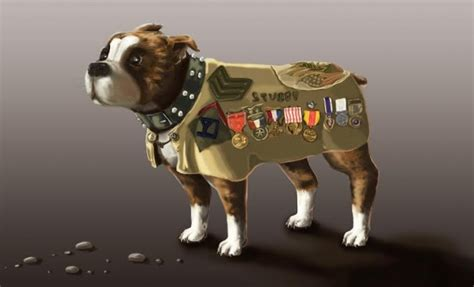 Animation Sergeant Stubby Academy Motion Pictures To Enter Production On Sgt Stubby An American Electric City