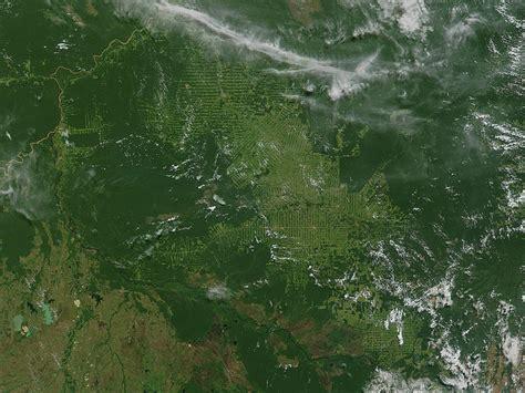 imagenes satelitales inpe brazil deforestation global ideas blog dw de