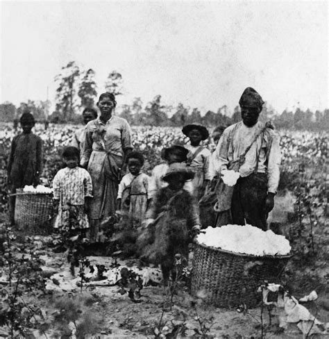 libro a wedding in haiti slavery slave family cotton savannah georgia 1860s slave life black history slavery