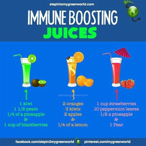 Imune Booster 17 best images about immune system boosters on