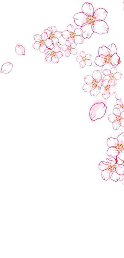 gambar bunga sakura kartun hitam putih gambar kartun