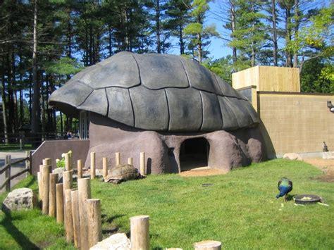 turtle housi sequa
