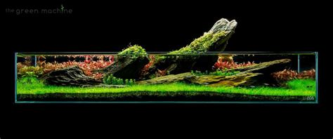 Green Machine Aquascape by By Findley Of The Green Machine Inspiring
