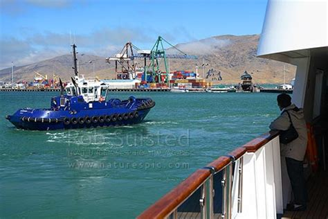 tugboat hiring in new zealand harbour tugboat pulling ship from wharf lyttelton harbour