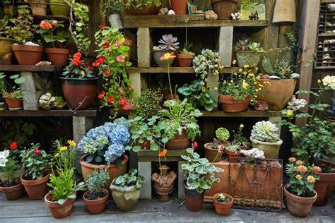 genius garden hacks  concrete gardenista