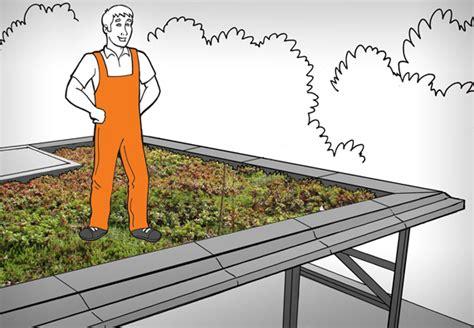 Garten U Freizeit by Dachbegr 252 Nung Und Dachbepflanzung F 252 R Profis Mit Obi