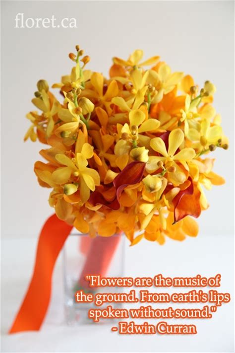 Wedding Bouquet Quotes by 36 Best Images About Floral Quotes On Cheap