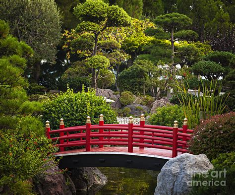 japanese garden bridge red bridge in japanese garden photograph by elena elisseeva