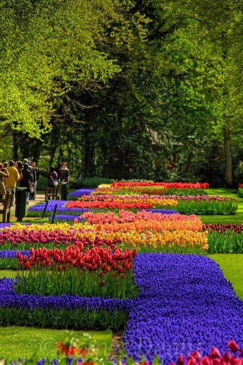 68 Best Keukenhof Images On Pinterest Netherlands The Netherland Flower Garden