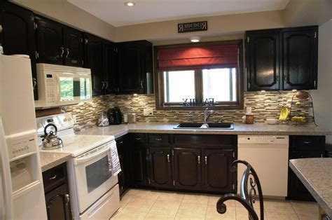 kitchen with black appliances cabinets