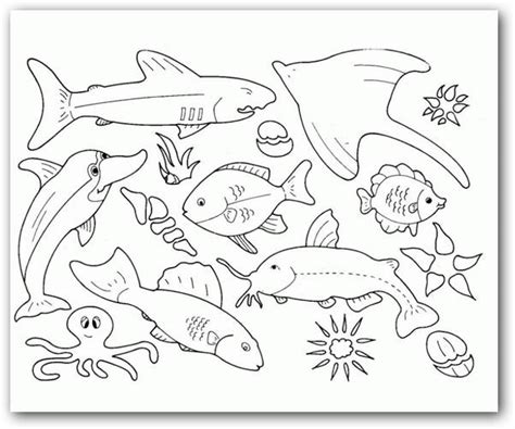 dibujos para colorear de animales del mar im 225 genes para colorear animales del mar fotos o im 225 genes
