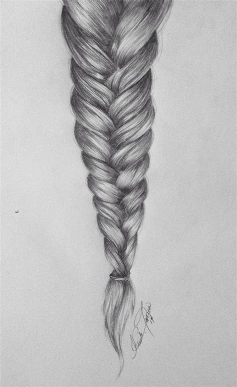 Drawing Of A With Braids by Braid Drawing By Christi M Torrio