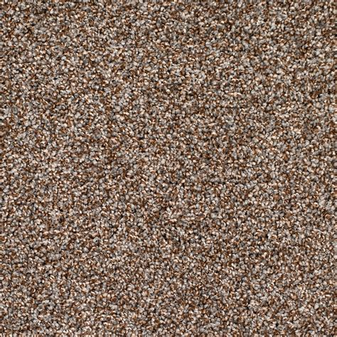 carpet colors taupe carpet color carpet vidalondon