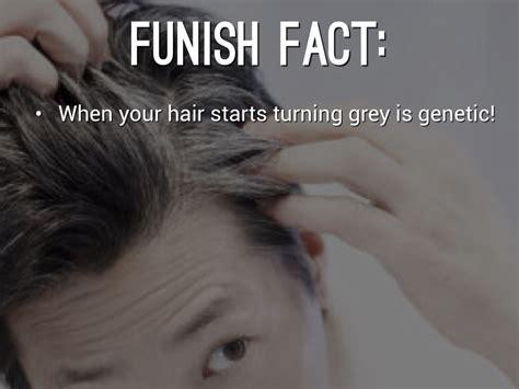 why does hair turn gray why does hair turn grey by annika scholten