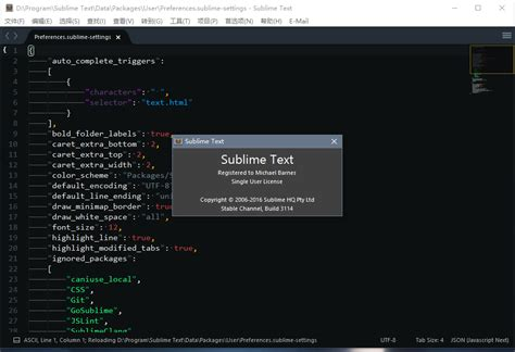 seti theme sublime text 3 sublime text build 3114 x64 熊猫便携版 熊猫运维