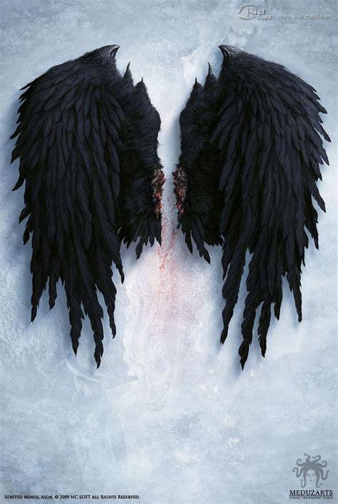 libro on angel wings illustration by daniel kvasznicza fantasy art designer defharo tinta fondos
