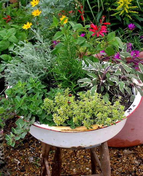 tips for planting a container herb garden 263 best images about fab ideas for herb containers on