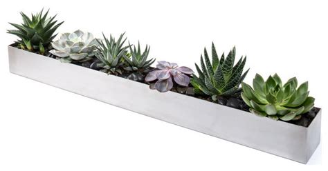 Veradek Geo Trough Planter Modern Indoor Pots And Modern Indoor Planters