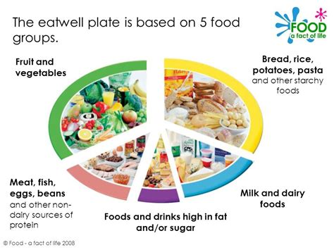 healthy fats non dairy the eatwell plate 169 food a fact of ppt
