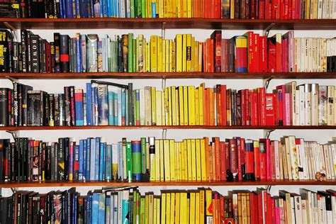 color coordinated bookshelf book lovers never go to bed alone