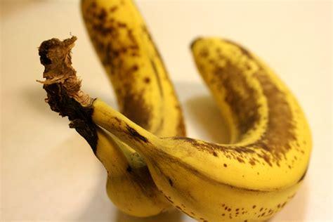 ripe bananas picture free photograph photos public domain
