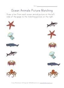 ocean animals worksheets under the sea pinterest for
