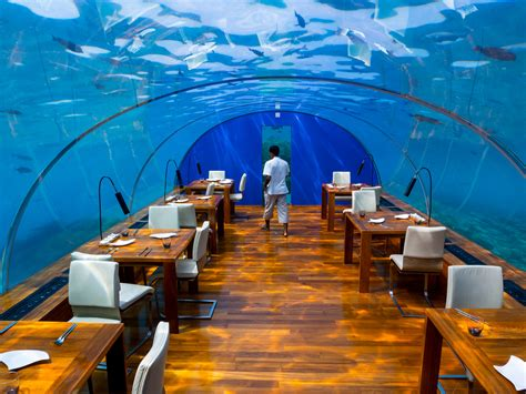 ithaa undersea restaurant indulge in luxurious ithaa underwater restaurant in