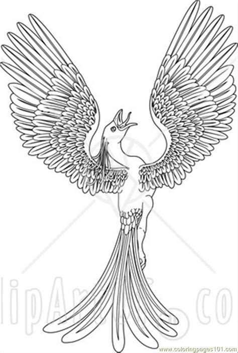 free coloring pages of phoenix bird