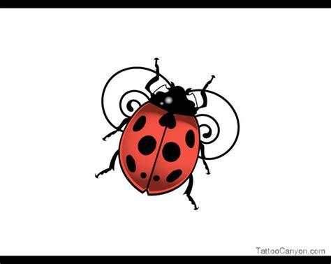 ladybug tribal tattoo 12 best bug tatoos images on ladybugs