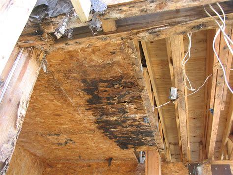 ensuring balcony durability waterproofing details that
