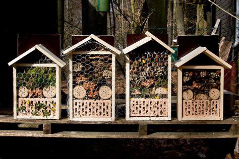 Wie Baut Ein Insektenhotel 3846 by Unsere Jugendgruppe Baut Ein Insektenhotel
