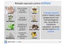 alimenti contro acidità di stomaco acidit 224 di stomaco cause rimedi sintomi dieta e cure