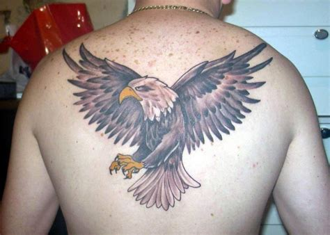 tattoos of eagles eagle tattoos designs ideas and meaning tattoos for you