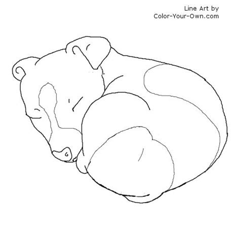 teacup puppies coloring pages teacup pomeranian coloring page realistic coloring pages