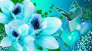 Blue orchid shine aquaa turquoise butterfly hd wallpaper