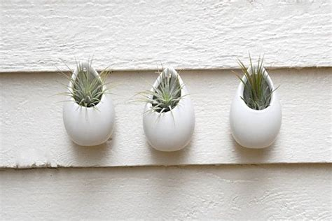 White Ceramic Wall Planter by Set Of 3 Mini Matte White Ceramic Hanging Planters Wall